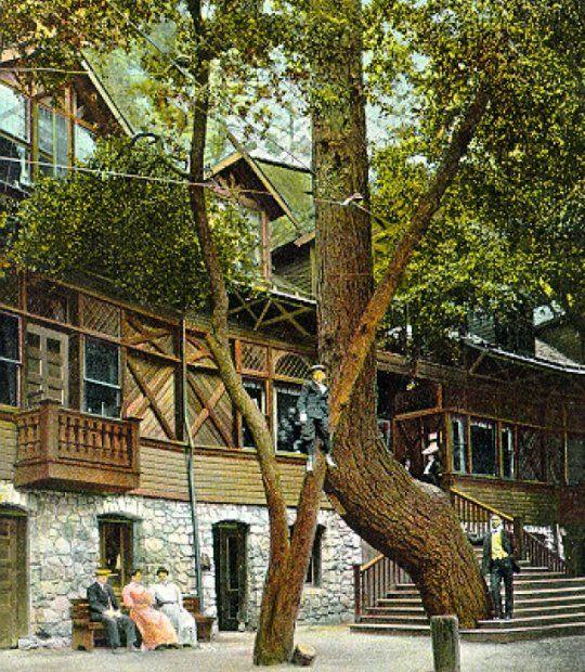 Ye Alpine Tavern